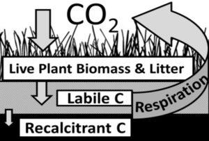biomass_soc